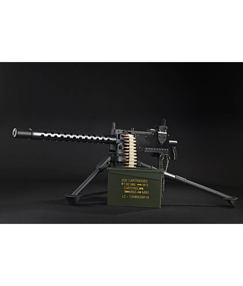 RWA M1919 AEG