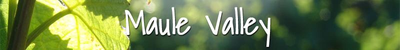 Maule Valley Wijnmarkt