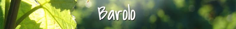 Barolo Wijnmarkt