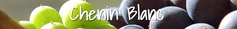 Chenin Blanc Wijnmarkt