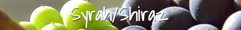 Syrah Shiraz Wijnmarkt