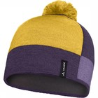 Arcteryx Men Cap Purple - Yellow
