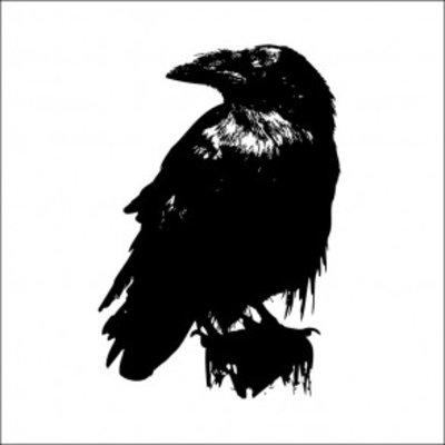 Tile Junkie Tegelsticker bird