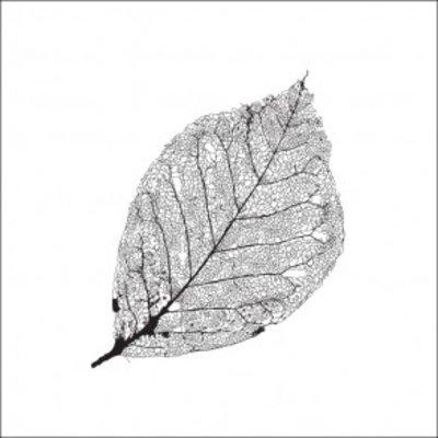Tile Junkie Tegelsticker Leaf