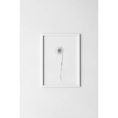 Moebe Frame A4 - wit