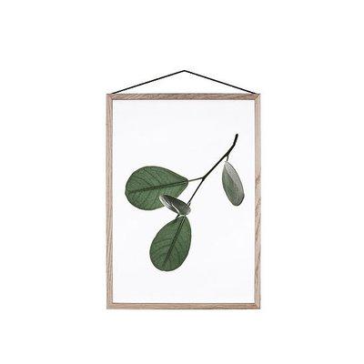 Moebe Floating  Leaves No.5 - A4