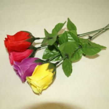 Kermis schiet rozen 20st