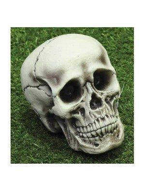 Magicoo Schedel -decoratie voor halloween 21 cm