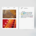 Frame Publishers Material World 2: Innovative Materials for Architecture and Design