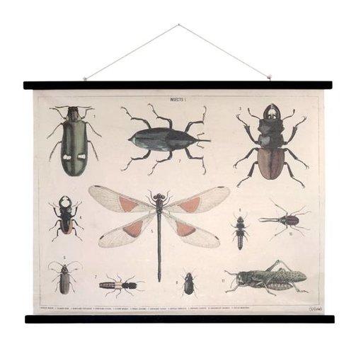 HKliving Schoolplaat Insecten XL