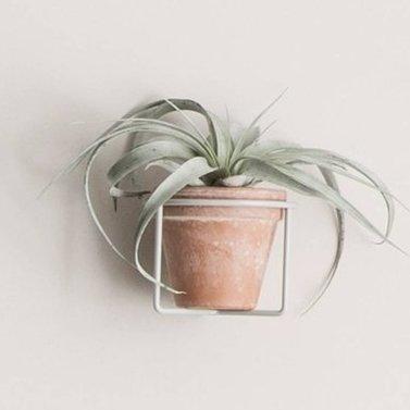 Plantenhouder