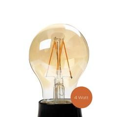 Studio 10 LED lamp dimbaar Peer
