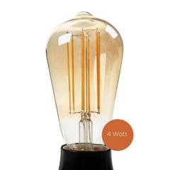 Studio 10 LED lamp dimbaar Tube