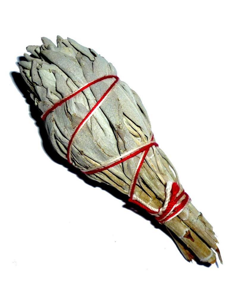 Salbei, Räucherpflanze, Smudge-Stick