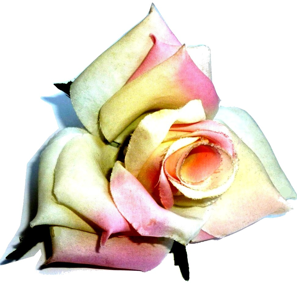 Rosenblüten kaufen