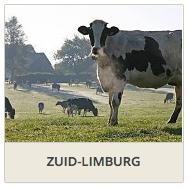 Zuid-Limburg-DownSouth