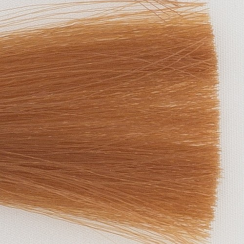 Itely Colorly 2020 acp Itely Haarverf - Itely Colorly 2020 acp - Haarkleur Licht blond goud (8D) - Itely Hairfashion