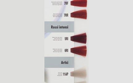 Rood en Samengestelde Rood Tinten : R - RF - RR - RI - RU - P