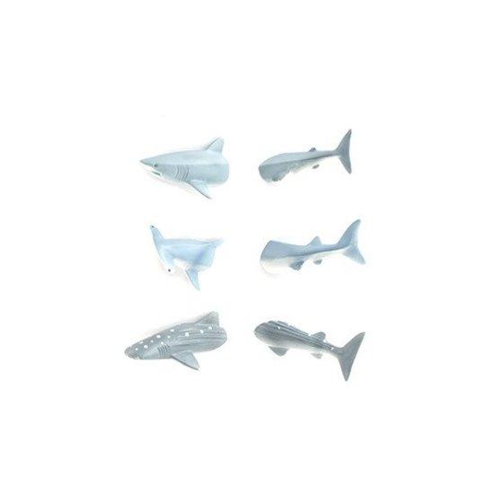 Haaien magneten