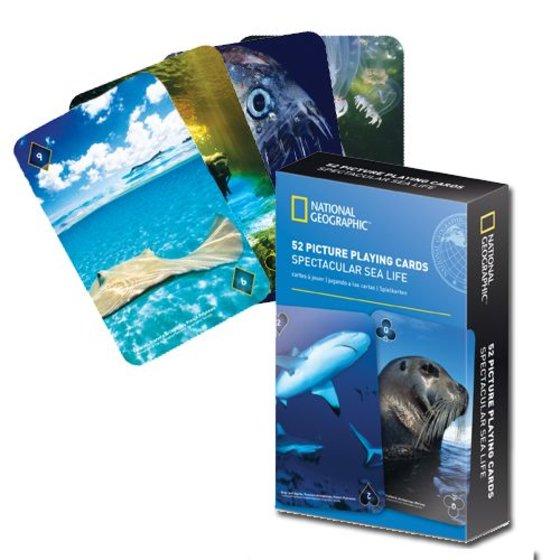 Kaartspel - Spectacular Sealife
