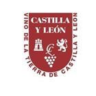 vt. Castilla y León