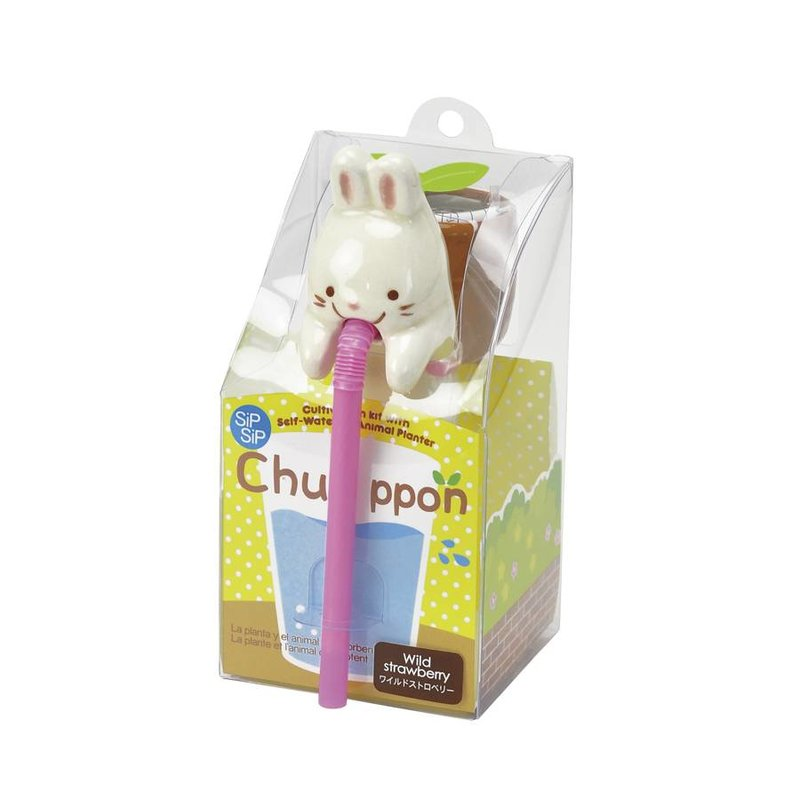 Chuppon