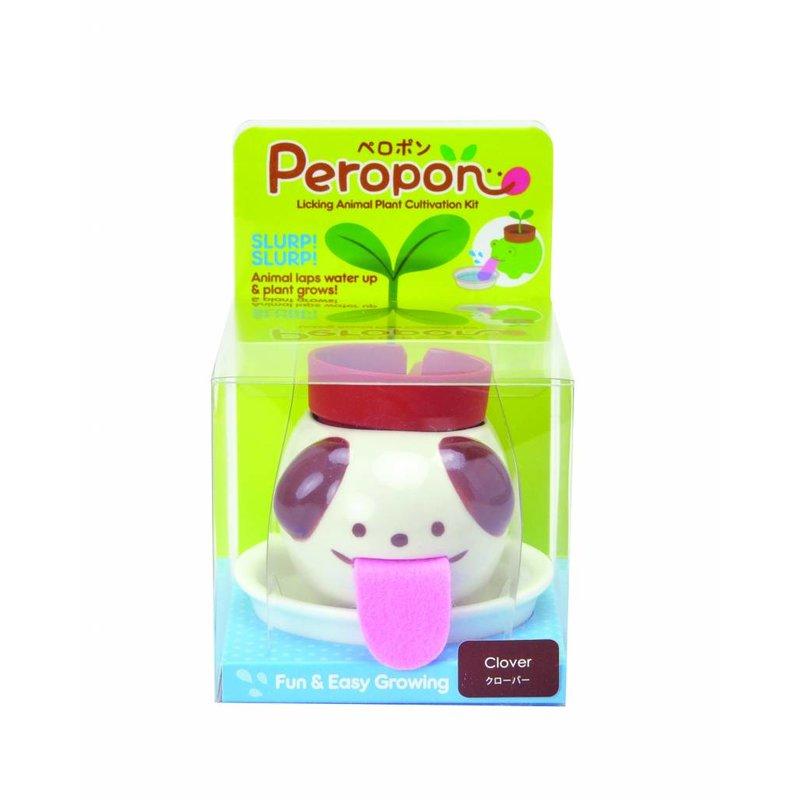 Peropon plantlets