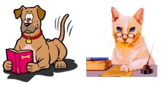 Blog Karin van Breenen: Vlooien bij hond en kat