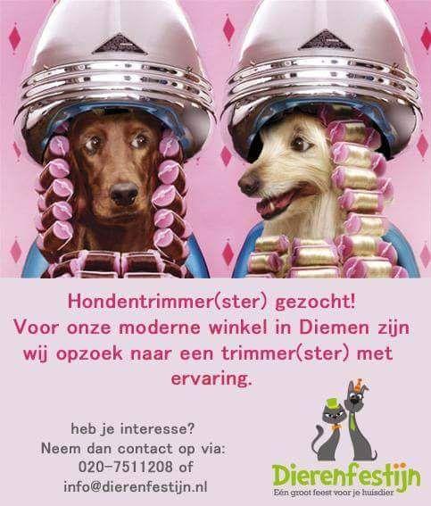 Hondentrimmer(ster) gezocht!