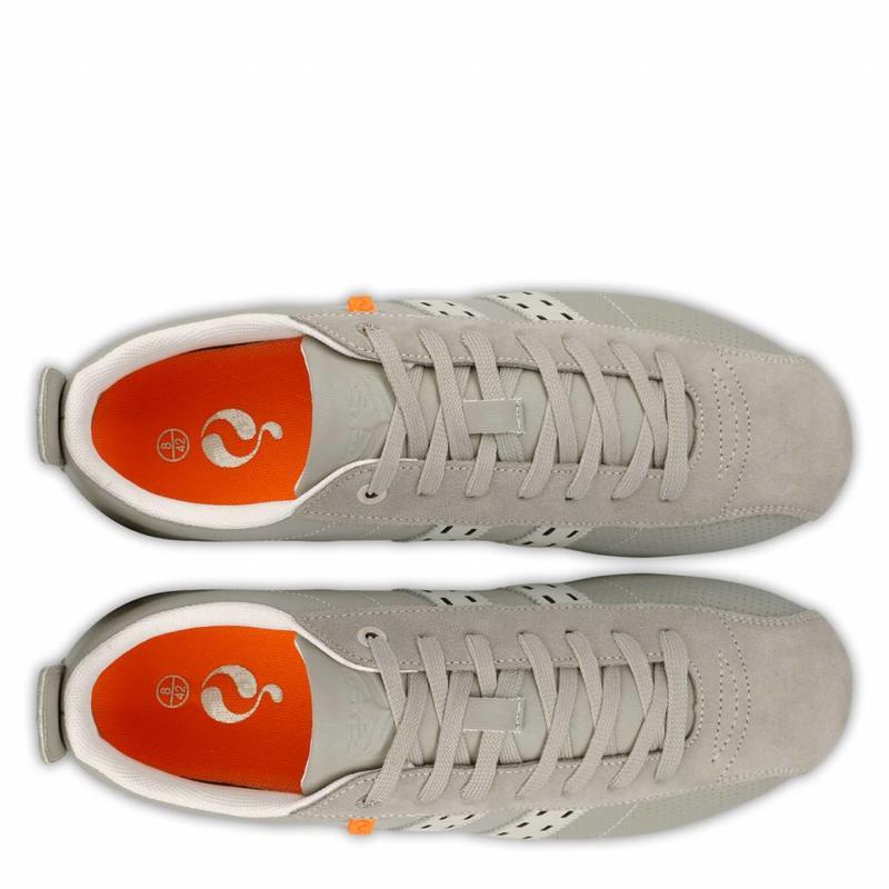 Heren Sneaker Typhoon SP Greyhound / Ice