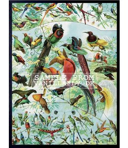 Vanilla Fly Poster | BIRD PARTY | 30x40 cm