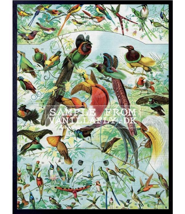 Retro Print Bird Party 30x40 Cm Vanilla Fly North Sea Design