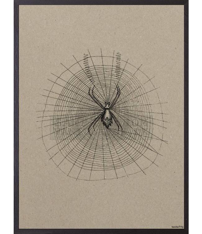 Vanilla Fly Print | SPIN CARDBOARD| 20x25