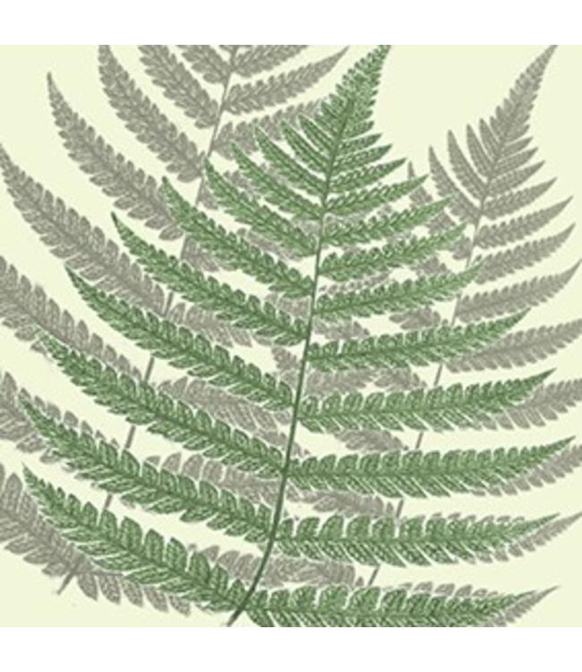 Tile Junkie Transparant sticker Varen plant
