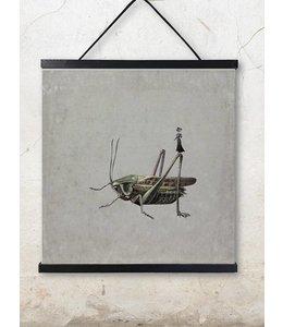 Vanilla Fly Poster | GRASSHOPPER | 50x50cm
