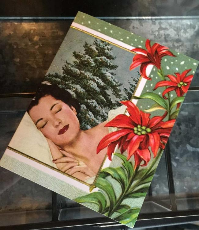 Beast in Show Christmas Cards Anne Taintor