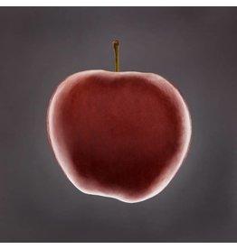 Apfel - Fotokunst - Jurriaan Hoefsmit