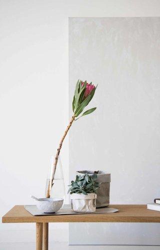 sacs de plantes
