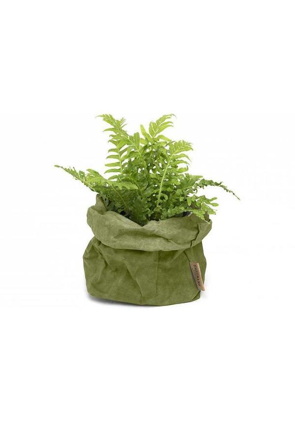 Paper Bag Forest