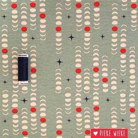 Birch Fabrics Organic knit Blood moon Mineral