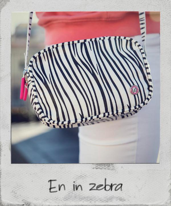 en in zebra