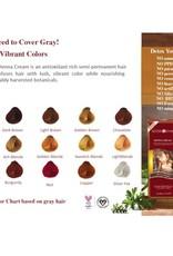Surya Brasil Surya Brasil Henna Cream Chocolate Staining