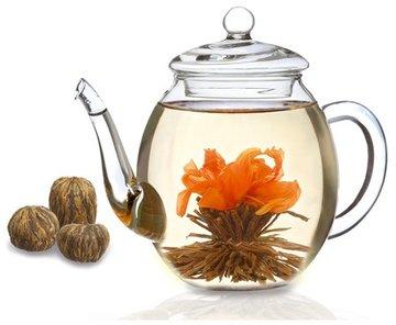 Theebloemen en potten van Creano