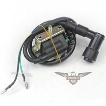 Zündspule Ignition Coil für 110cc125cc ATV QUAD Type 1
