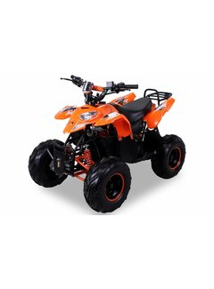 Actionbikes Kinder Elektro Quad S-5 Polari Style 1000 Watt