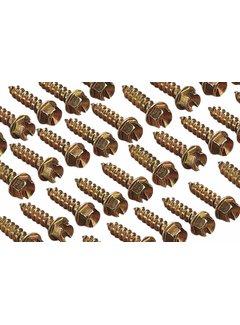original Spikes ICE Screws
