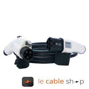 DOSTAR Câble de recharge véhicule électrique 32A Monophasé Type 2 - Type 1 (4 mètres)