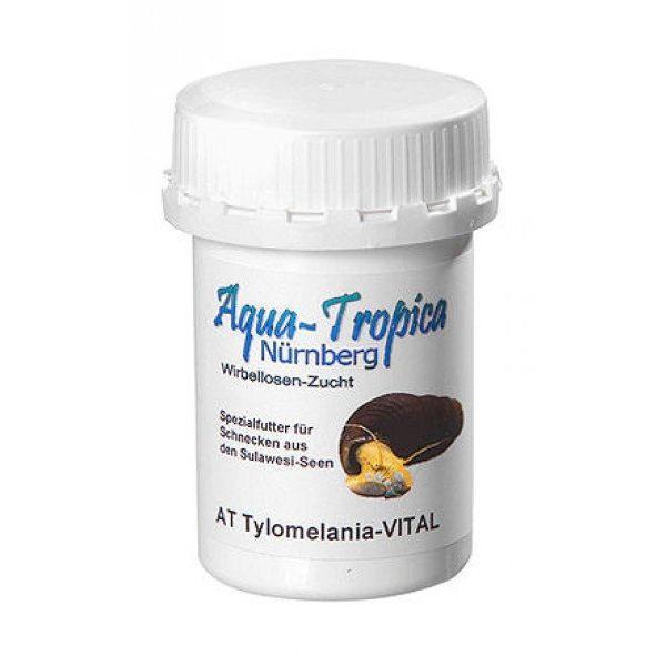Aqua Tropica Tylomelania-VITAL