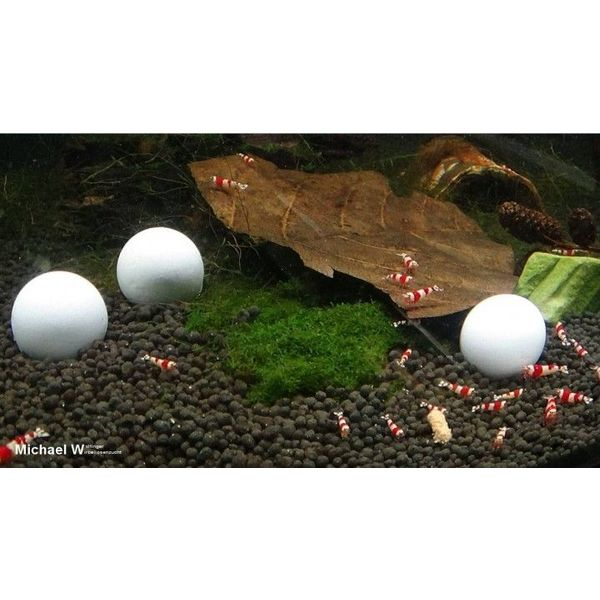 Aqua Tropica White-Balls - Mineralbälle