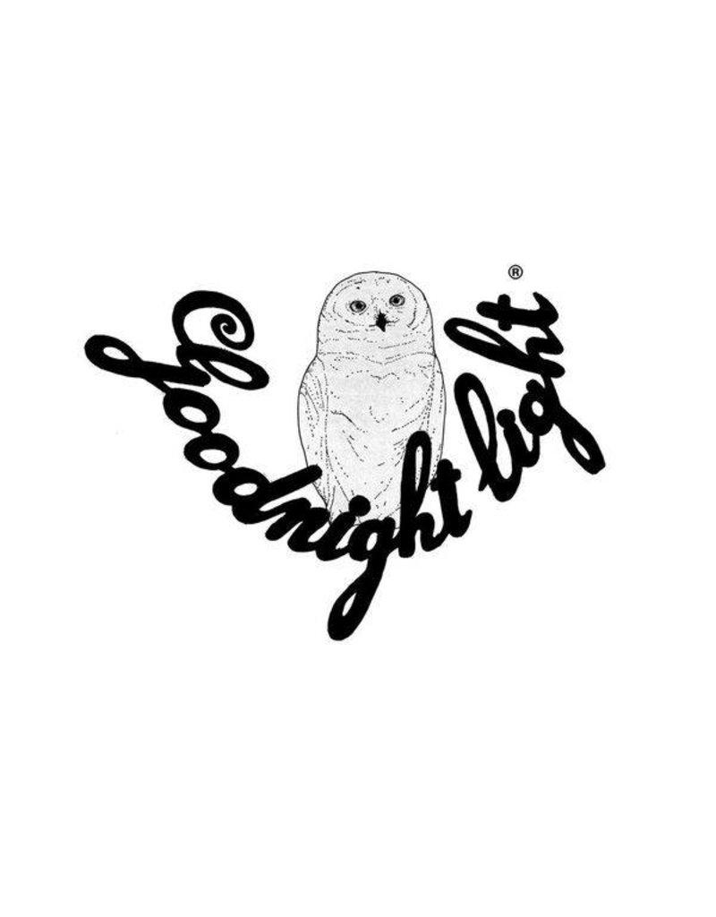 Goodnight Light Handpainted DinoRoar! Lamp - Copy